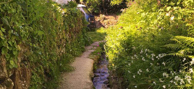 St Martin Water Lanes